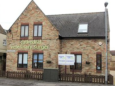 Cathedral Vet Surgery